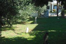 Ferienwohnung in Porec - Apartment Alma IID-Villa Alma
